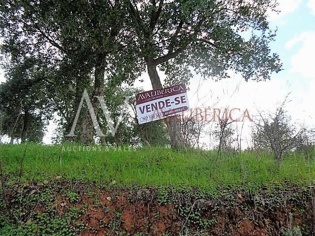 Fotografia de capa da venda Transportes Luís Arroteia, Lda..
