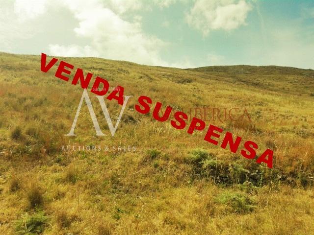 Fotografia de capa da venda Maria Jose Gomes Silva Nascimento e Manuel Xavier Nascimento.